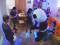 Fuckfest at a party with a teddy panda